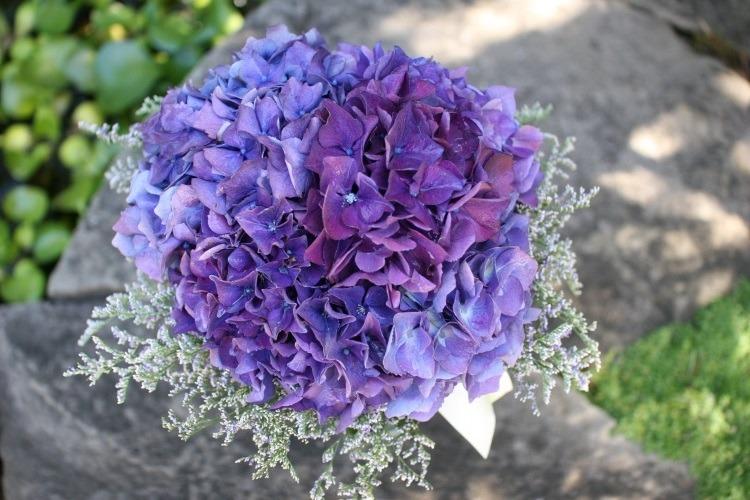 Несколько оттенков фиолетового