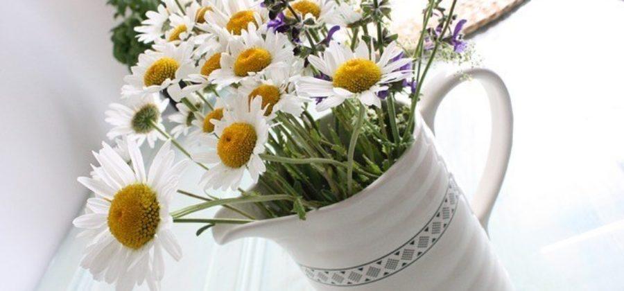 Свадебный букет из ромашек – выбираем цветы для невесты