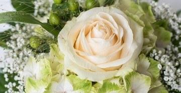 Красивый букет из белых роз