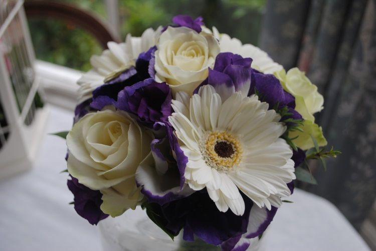 Сочетание белого и фиолетового