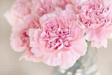Красивый букет розового цвета