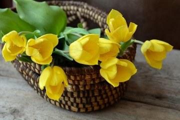 Свадебная композиция из тюльпанов